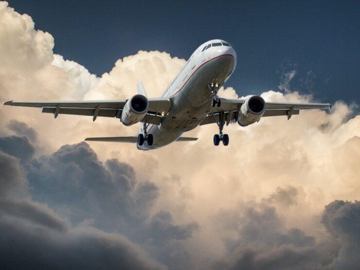 Fly er ved at lande